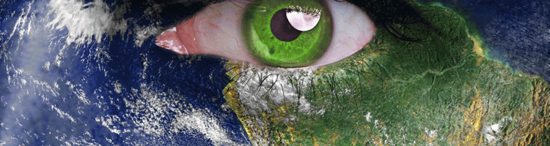 Animism Today: Engaging with a Living World