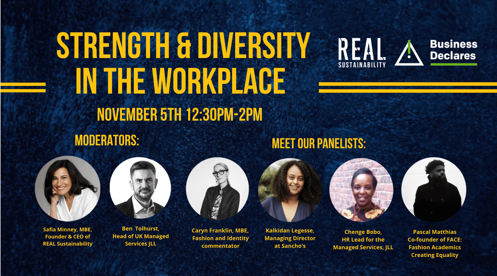 Strength & Diversity in the Workplace - real sustainability panel dicsussion
