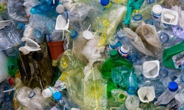 Plastic Free Campaign