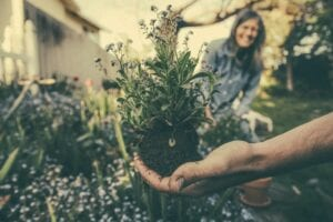 hand holding lavender plant with woman sustainably growing and smiling