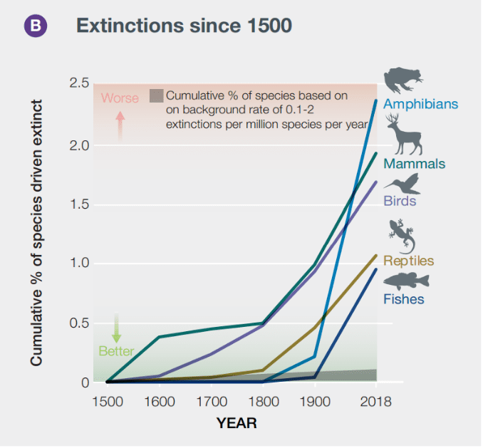 graph of global extinctions